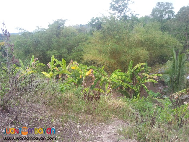 overlooking 3,500 sq.m lot for sale in Talisay City, Cebu