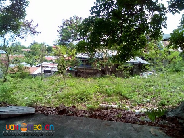 Lot for sale Royal Cebu Estate, Casili Consolacion Cebu