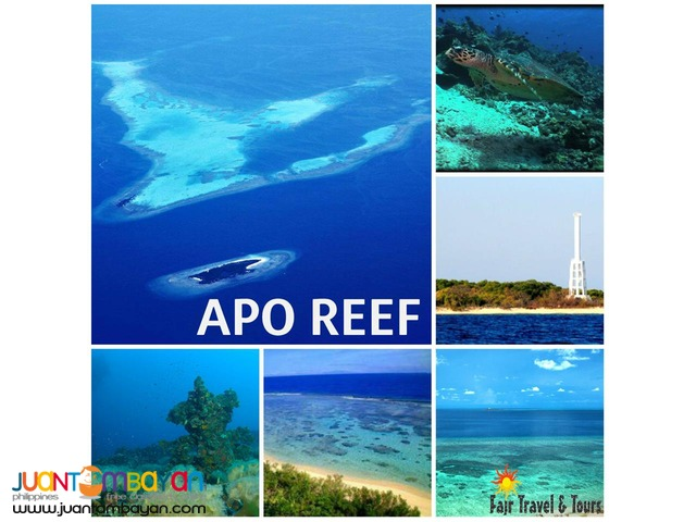 APO REEF TOUR PACKAGE