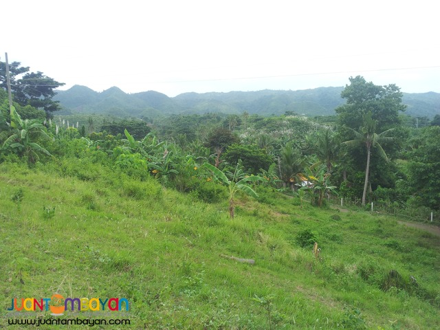 27,500 sq.m lot for sale in Palompon, Leyte