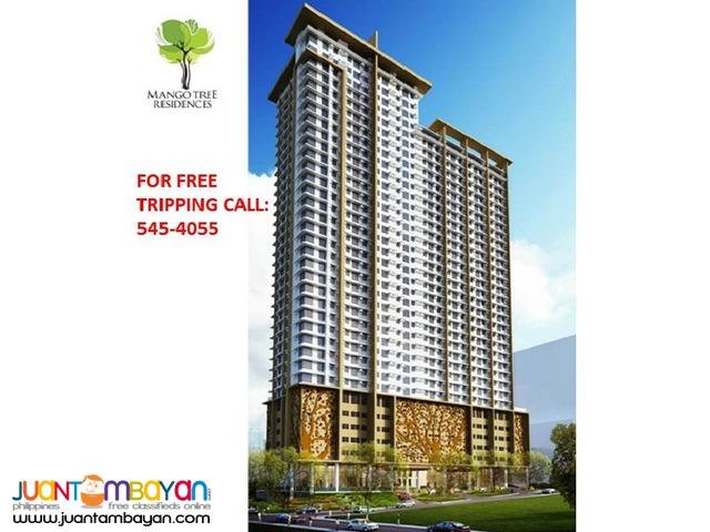 Mango Tree Condominium @ M. Paterno 30 sqm - S@n Juan City
