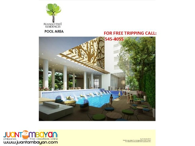 Mango Tree Condominium @ M. Paterno 30 sqm - S@n Juan City