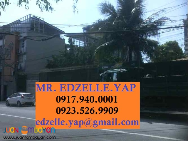 Lot for Sale Mother Ignacia Quezon City
