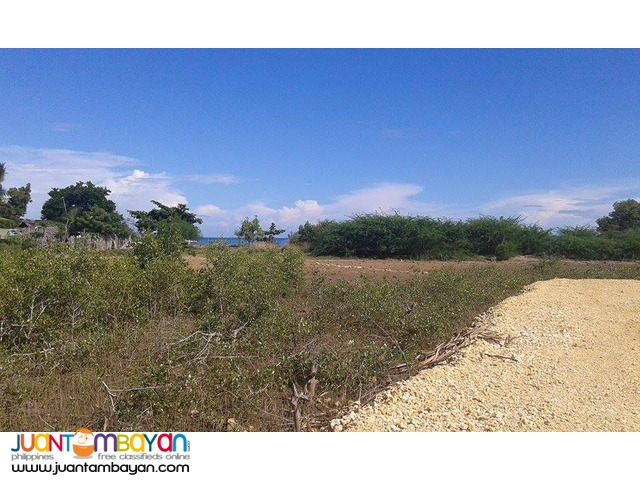 Affordable Beach Lot in Cebu