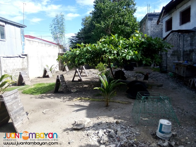 240sqm vacant lot equitable village las pinas city