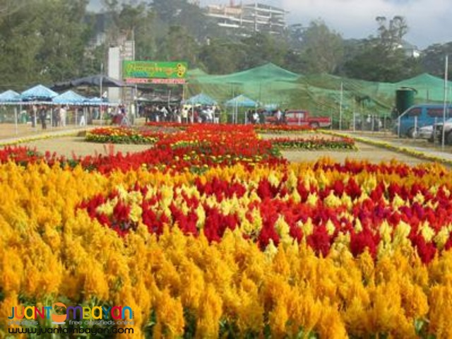 Baguio Tour Package, Ridgewood Residences