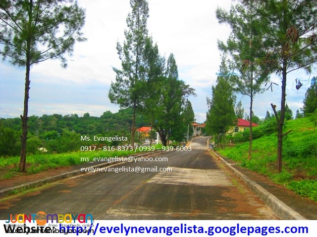 Res. Lot for sale in Brgy.Malinta Antipolo City - Alta Vista