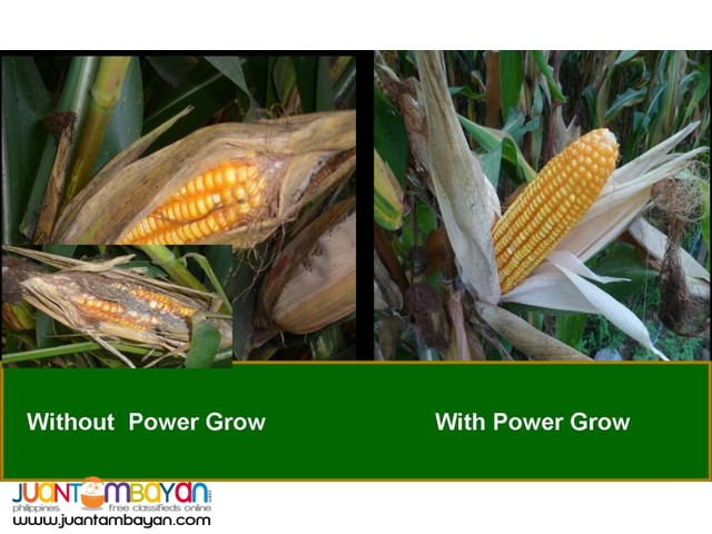 Power Grow Foliar Fertilize Distributor