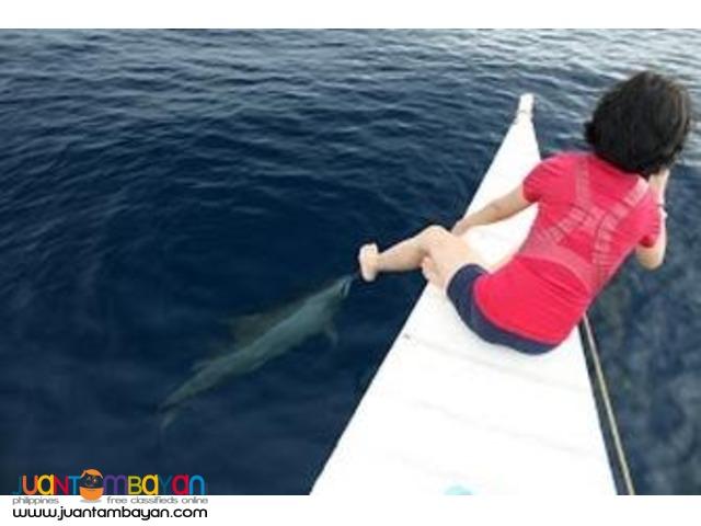 Bais Dolphin Watching, Budget
