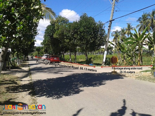 Industrial Lot for Sale at Compostela Cebu