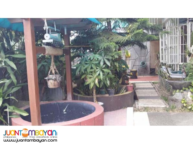 PH299 Pasig City House and Lot for Sale