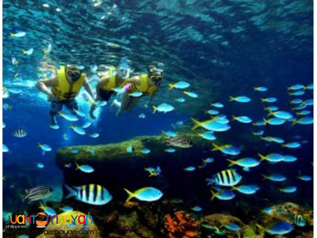 Singapore tour package, with Adventure Cove Water Park