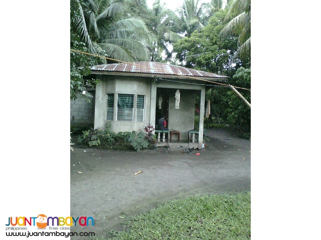 house and lot for sale in valencia negros oriental