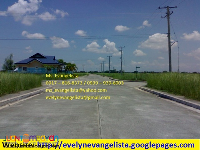 Res. Lot in Cabanatuan, Nueva Ecija - The Villages at LAKEWOOD CITY