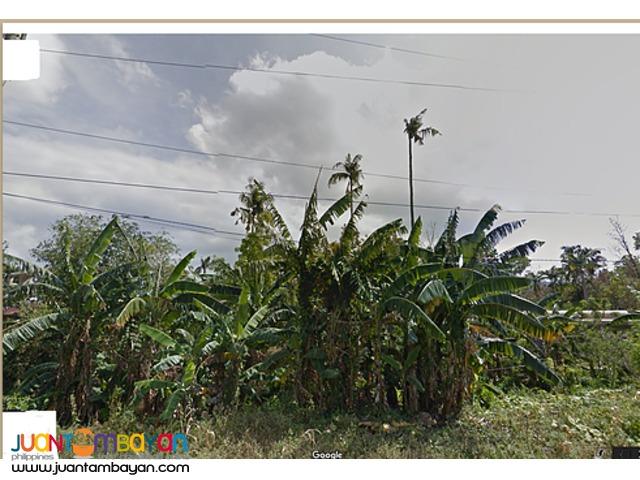 Dinalupihan,Bataan 617 Has Raw Land