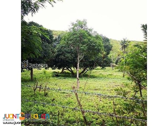 Lot for sale as low as P 3,868k monthly amort in Compostela