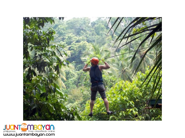 Davao tour packages with Samal's treetop walk