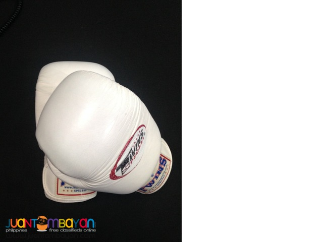 Twins Special 16oz All Leather Boxing Gloves in White