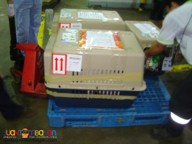 SWK SHIPPING ASSISTANCE AND MORE TRUSTED SERVICES SINCE YEAR 2001