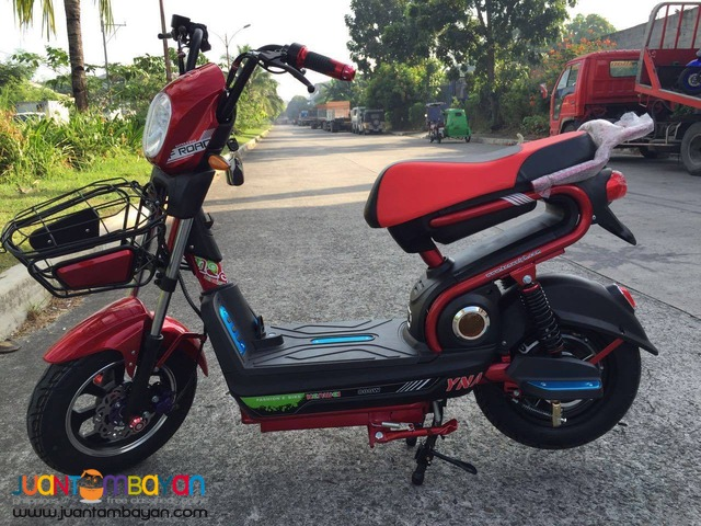 Electric Scooters-Kenwei