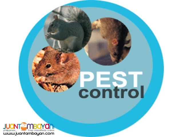 General Pest Control Service and Termite Control