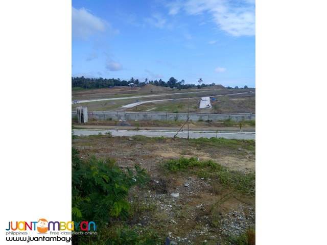 LOT ONLY IN ILUMINA ESTATE