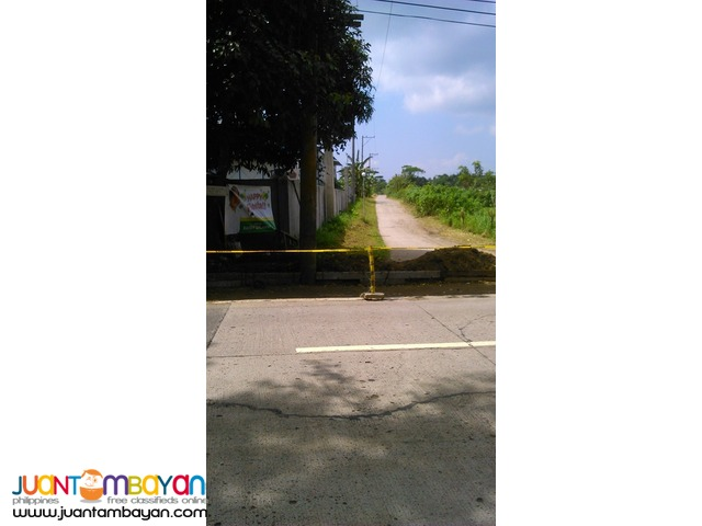 Farm lot in Manggas, Alfonso, Cavite