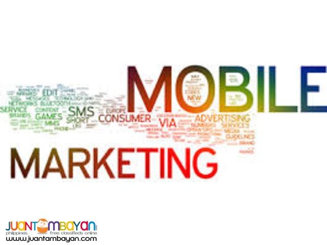Email Marketing Management, Web Development, SMS blast, SEO Services