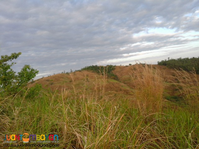 NUEVA ECIJA FARM LOT
