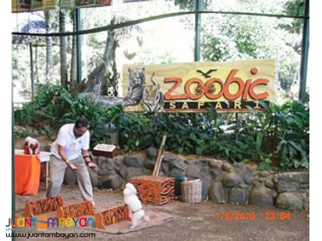 Subic tour package, invites you to Zoobic Safari and Ocean Adventure