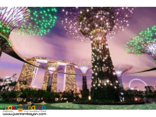 Love Singapore Tour Package