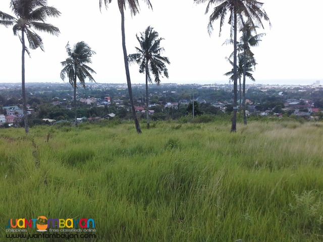 Lot for sale as low as P 9,066k monthly amort in Minglanilla Cebu