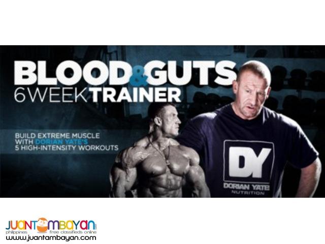 Blood & Guts 6 Week Trainer