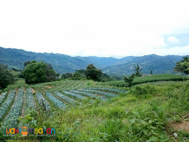 Lot for sale as low as 19,027k monthly in Busay Cebu