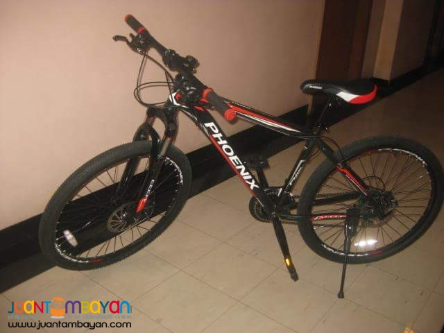 Phoenix M333 Mountain Bike