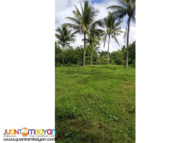Farm Lot For Sale In Malvar Batangas City Batangas City