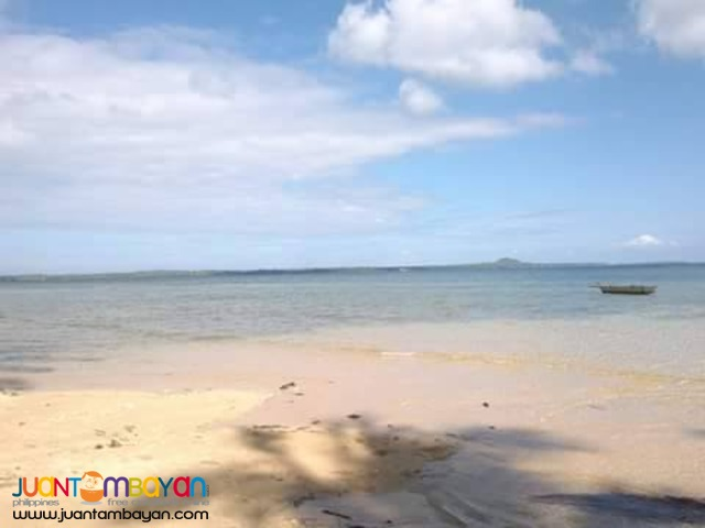 BEACH LOT IN CAMOTES ISLAND