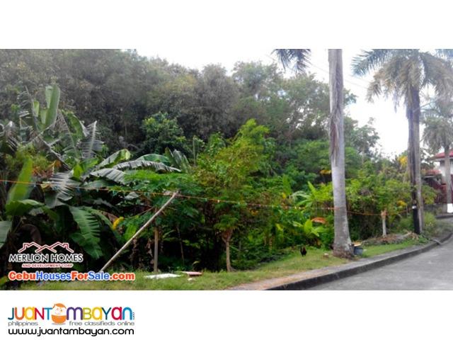 El Monteverde de Cebu lot for sale