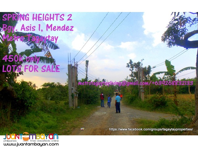 100sqm Lots for Sale in SPRINGHEIGTS 2, Asis Mendez, Rizal Salih Jr.