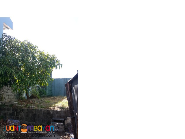 Lot in Las Pinas Manuela Bermuda