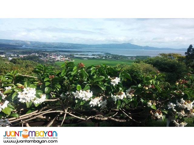 MANILA EAST LAKEVIEW FARMS Morong - Vacation/Farm/Residential Lots