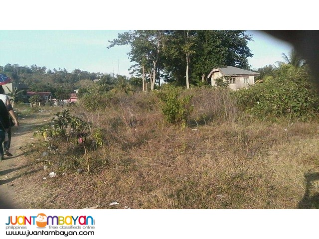 Vacant Lot in Minganilla