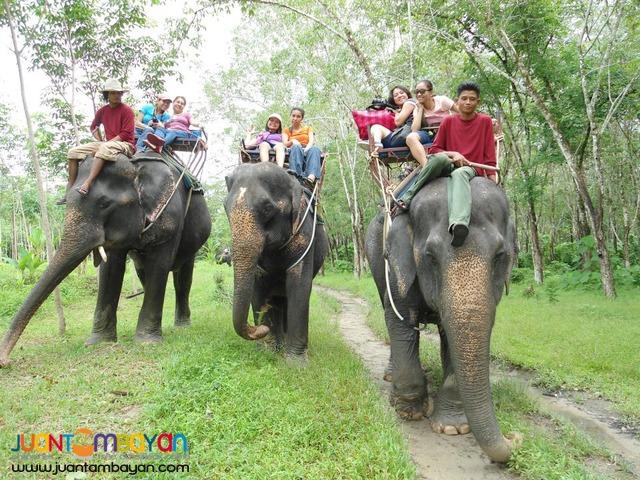 4 Days Bangkok Royal Palace, Floating Market and Elephant Show.