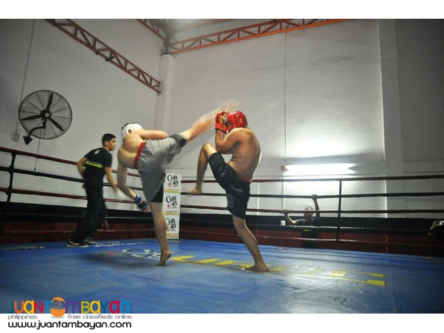 HOme Boxing Muaythai HIIT Functional Fitness personal Home trainer