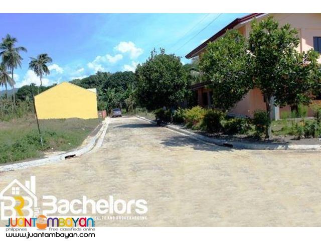 Balamban House & Lot San Josemaria Village Camara Model