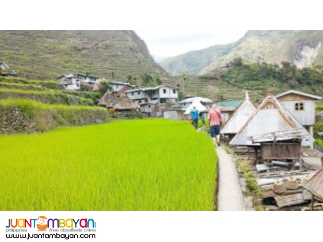 Bold and Beautiful, Banaue Tour