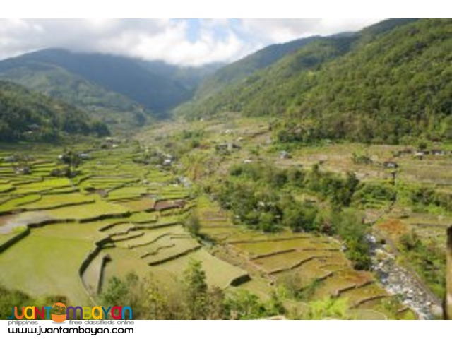 Banaue Tour with Private Transport Package