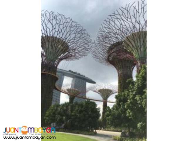 Colorful Cultures, Singapore tour package