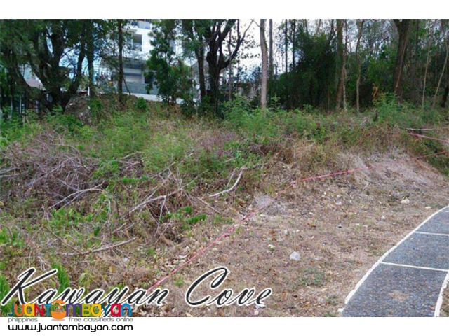 Lot For Sale in Kawayan Cove, Nasugbu, Batangas