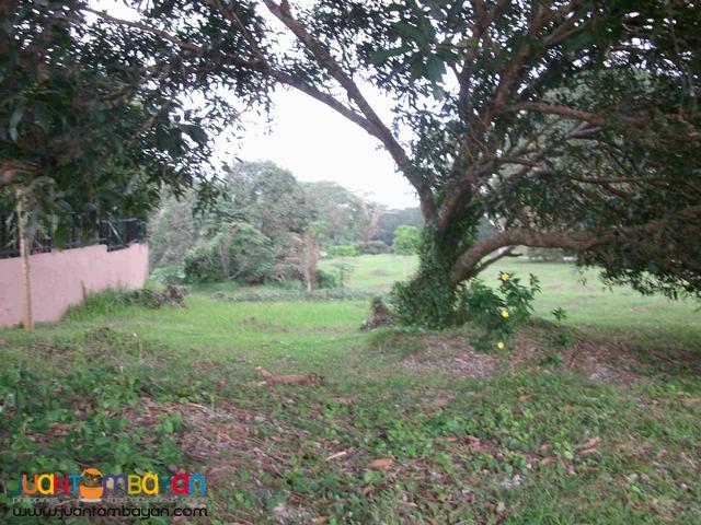 Ayala Westgrove Heights near Sta Rosa Laguna Lot for Sale